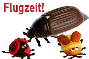 Maikäfer / Marienkäfer / Bienen